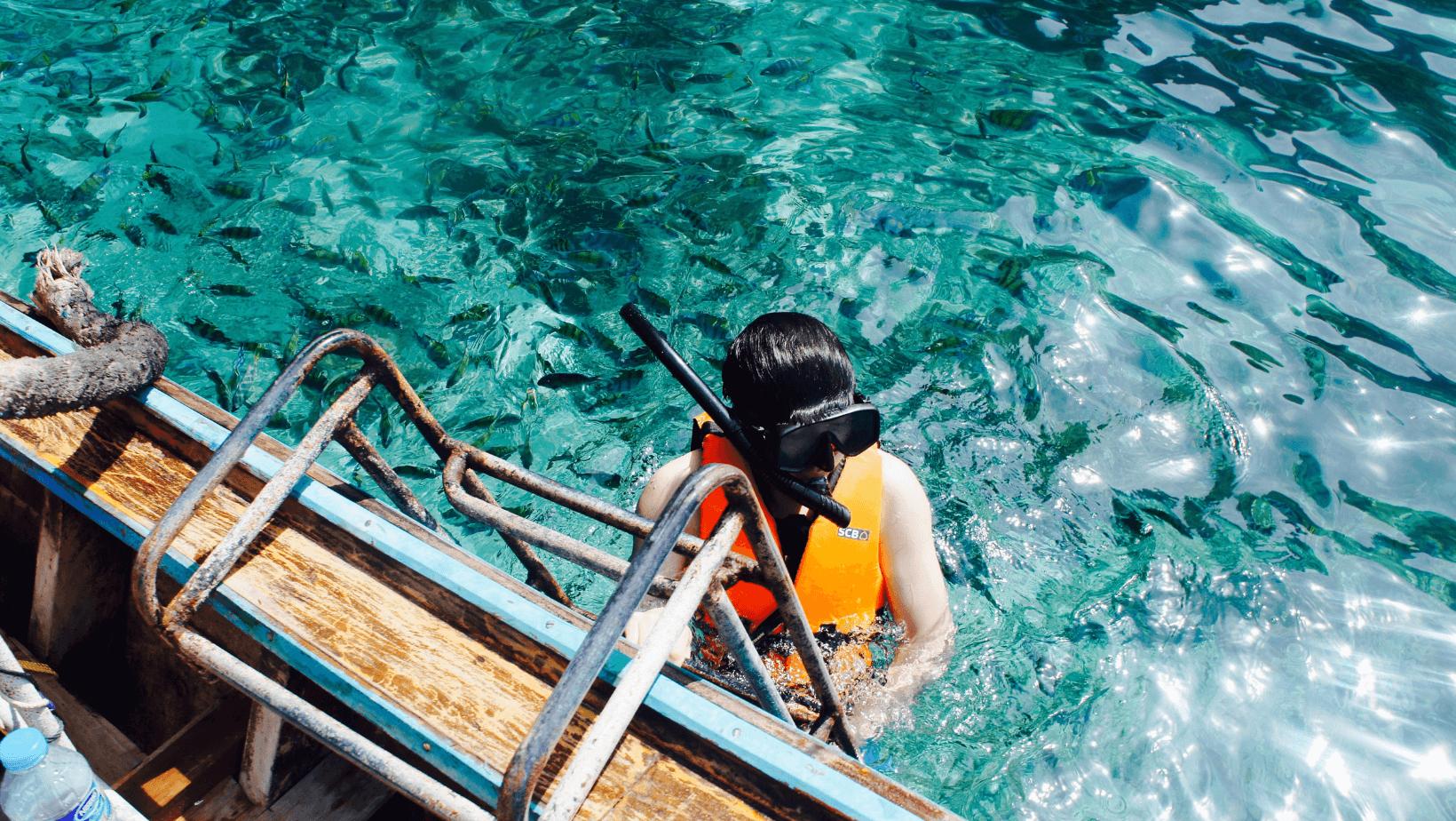 Best Snorkel Gear & Sets